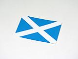 Scotland23jpeg500